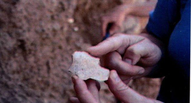 Avrupa insanlık tarihi Anadolu'dan göçmüş