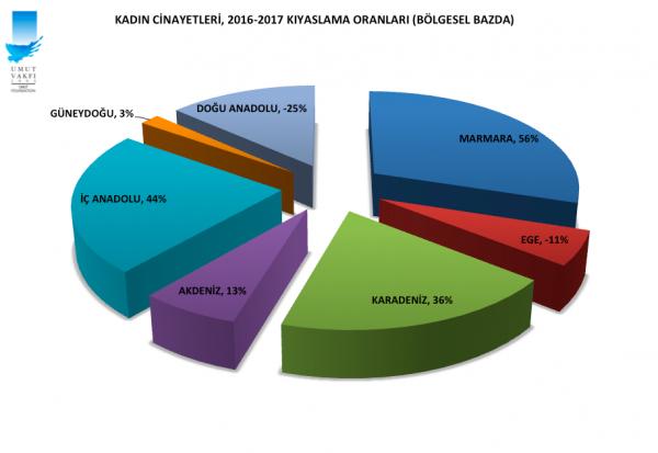 Kadın Cinayetleri 2016-2017 kıyaslama (çeşitli renk)